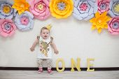 The Girls Birthday Is One Year. One Year Old Child. First Birthday poster