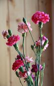 Постер, плакат: Bouguet Of Carnation Flowers Pink Flowers Of Carnation In Vase On Wooden Background Carnations For