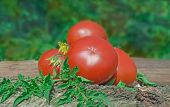 Fresh Red Tomatoes On Wooden Background. poster