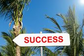 Success Sign In Tropical Forest. Successful In Life And Business Concept. Road Sign. Success Sign Pr poster