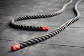 Close Up Of Fitness Battle Ropes Lie On Black Floor In Fitness Gym. Sport And Fitness Equipment. Fun poster