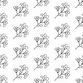 Floral Seamless Pattern In Vector. Art Line Illustration. Background Of Plant Elements. Meadow Meado poster