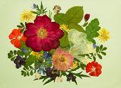 Bouquet Of Flowers On A Light Background. Pressed, Dried Rosehip Flowers, Malva, Geranium, Violet, D poster