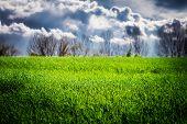 Green Grass Field After Thunderstorm Sun Light & Clouds On Sky. Spring Weather Thunderstorm Sun Rain poster
