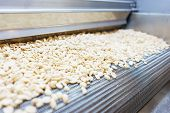 Raw Nuts On A Conveyor Belt. Drying, Roasting And Packaging, The Production Process Of Light Snacks. poster