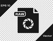 Grey Raw File Document. Download Raw Button Icon Isolated On Transparent Background. Raw File Symbol poster