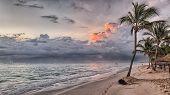 Hawaii Island Palms Beach. Turquoise Sea And Blue Sky. Palm Trees Beach Vacation Tropical Travel Sho poster