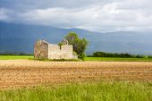 stock photo of plateau  - field with a tree and ruin of house - JPG