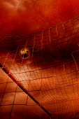 soccer ball in the net, goal scoring