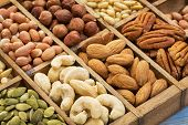stock photo of pecan  - nuts and seed collection  - JPG