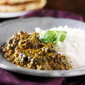 stock photo of paneer  - plate of indian saag paneer curry close up - JPG