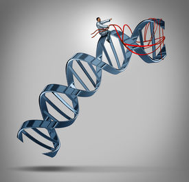 stock photo of genes  - Genetic engineering and gene modification medical science concept as a doctor or researcher scientist guiding a DNA strand using a harness as a symbol of medical bioengineering to develop therapies to cure human disease - JPG