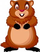 picture of groundhog  - Vector illustration of Cartoon happy groundhog isolated on white background - JPG