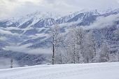stock photo of olympic mountains  - Beautiful snow - JPG