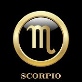 foto of scorpio  - Scorpio zodiac sign in oval frame vector Illustration - JPG