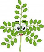 stock photo of moringa  - Mascot Illustration of a Moringa Stalk Smiling Happily - JPG