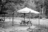 stock photo of gazebo  - Old wooden gazebo under the woods - JPG