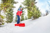 picture of snow shovel  - Arabian boy working with shovel and cleaning snow in winter during day with fir tree on background - JPG