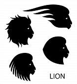 pic of lions-head  - stylized lion head on light background  - JPG