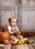 image of gourds  - Adorable baby girl sitting next to pumpkins and gourds and other fall decor - JPG