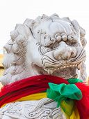 pic of debonair  - The lion design for decorate and defense at shirn Juytuy Phuket Thailand - JPG