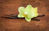 picture of yellow orchid  - Vanilla sticks and yellow orchids on the wood background - JPG