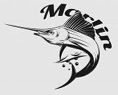 foto of swordfish  - vector logo sea fishing with jumping Marlin or swordfish - JPG