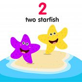 foto of starfish  - Illustrator of number two starfish for education - JPG