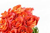 picture of bridal shower  - beautiful roses - JPG