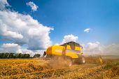 Combine Harvester In Action On Wheat Field. Process Of Gathering Ripe Crop From The Fields. Agricult poster