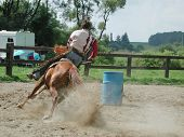 image of barrel racing  - barrel racing western rider - JPG