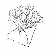 Vector Bouquet Of Outline Cyclamen Or Alpine Violet Bunch, Bud And Leaf In Envelope In Black Isolate poster