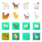 Vector Illustration Of Breeding And Kitchen Icon. Collection Of Breeding And Organic Vector Icon For poster