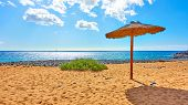 Tropical beach with straw parasol by the sea on sunny summer day poster