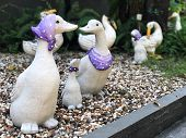Cute Duck Statues On The Colorful Stone In The Garden. Decore Garden With A Duck Statue poster