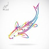 image of koi tattoo  - Vector image of an carp koi  - JPG