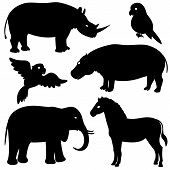 stock photo of behemoth  - Vector set 1 of african animals silhouettes - JPG