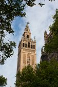 Постер, плакат: Кафедральный собор Святой Марии Престола Севилья Испания