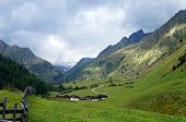 Landscape in the Stubai Valley