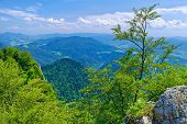pic of pieniny  - Spring landscape in The Pieniny Mountains National park Poland - JPG