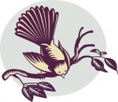 pic of fantail  - illustration of a New Zealand fantail bird on a branch done in retro woodcut style - JPG