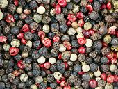 picture of peppercorns  - Red black green and white peppercorns mixed - JPG