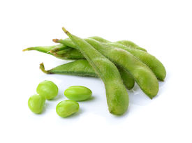 picture of soybeans  - green soybeans   isolated  on  a white background - JPG