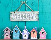 Welcome sign with bow by collection of birdhouses poster