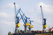 foto of shipyard  - Shipyard with tall cranes in Hamburg Harbor Germany  - JPG