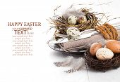 stock photo of quail  - table decoration on white wooden background with quail eggs