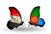 image of eritrea  - Two butterflies with flags on wings as symbol of relations Egypt and Eritrea - JPG