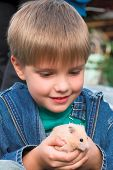 stock photo of genital  - young boy with small lovely pet  - JPG