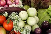 picture of food plant  - green eggplants and vegetable healthy food  - JPG