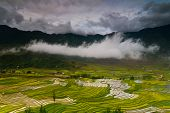 pic of northeast  - Mu Cang Chai is a rural district of Y - JPG